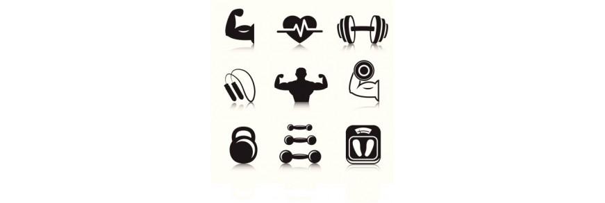 التغذية الرياضية و دعم التدريب